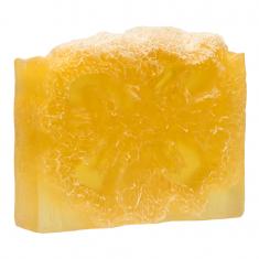 GLORIA Мыло с люфой Апельсин в шоколаде, антицеллюлитный комплекс / HOME SPA 100 г