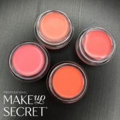 Кремовые румяна Make up Secret (Cream Blush) CB02 Лососевый MAKE-UP-SECRET
