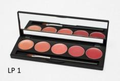 Палитра помад 5 оттенков 5 Lip Palette MAKE-UP-SECRET LP1